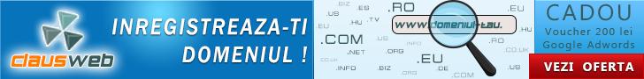 Inregistrare-domenii-728x90