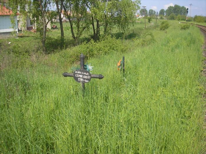 """MORTAL. Crucile de lângă calea ferată de la Carei - Căpleni """"vorbesc"""" despre pericolul iminent"""