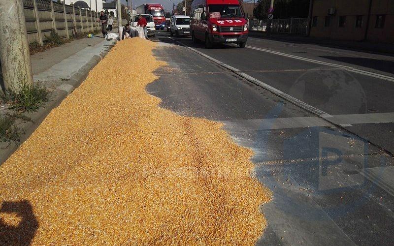 drumul-botizului-cereale-5