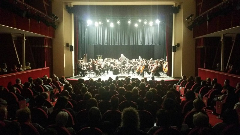 concert teatru carei
