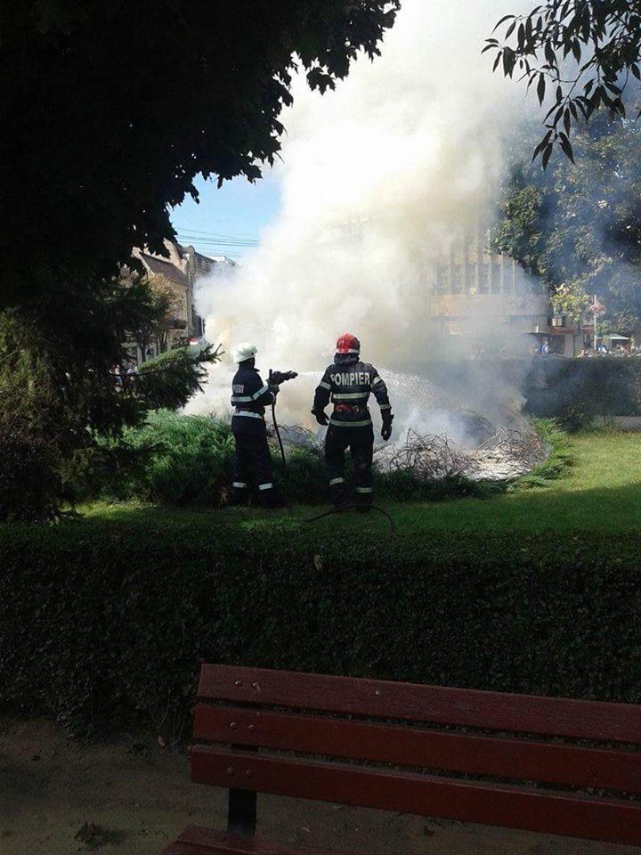 foc centru01