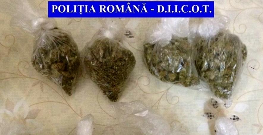 cannabis-punga