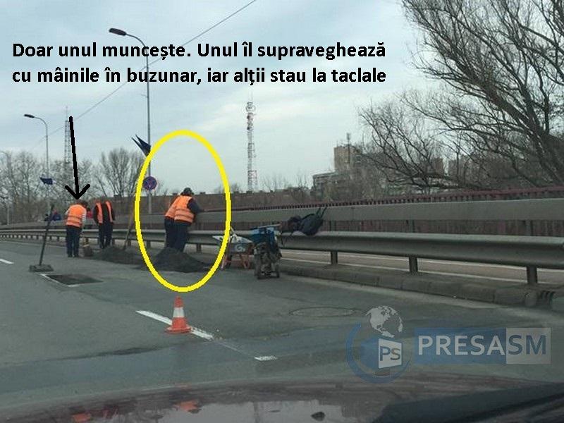 asfaltare satu mare (5)